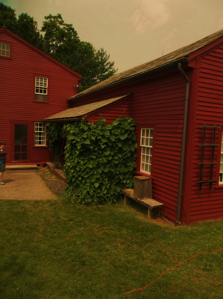 The Alcott House