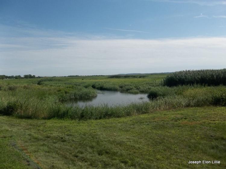 York ME, The Salt Marshes