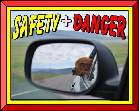 SAFETY and DANGER