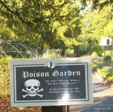 Poison Gardens were a common part of many medieval castles.