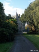 A walk through the meadow gardens brings you to the foot of Blarney House the current home of the Lord Colthurst