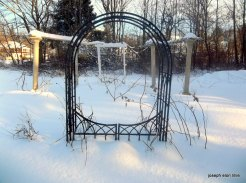 Rough winter 1