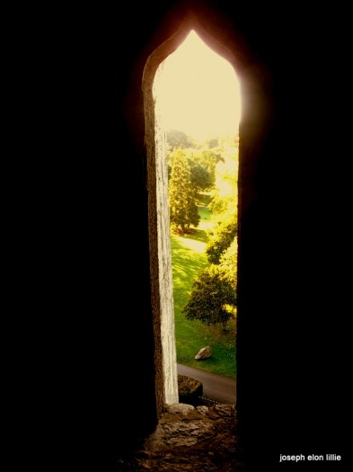 The view from inside Blarney Castle