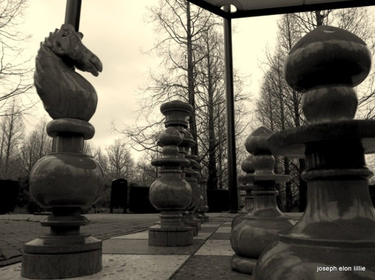 In the chess board
